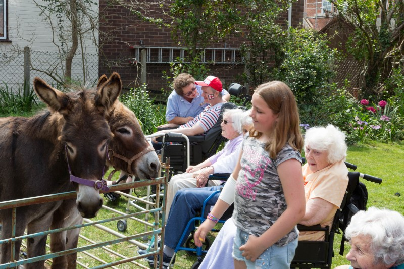 St George's Care Fun day activities